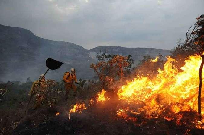 A luta dos brigadistas e voluntários contra as chamas